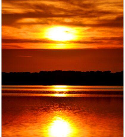 Sun Reflection Sticker