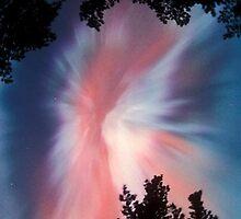 Pink Aurora Borealis,  Finland by nidredbubble012
