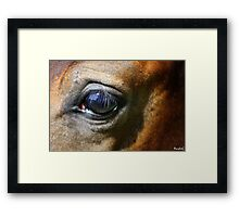Fur & Eyelashes Framed Print