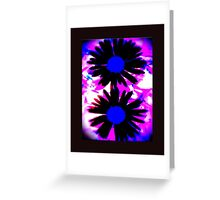 FUNKY IPHONE COVER - TWO DAISIES Greeting Card