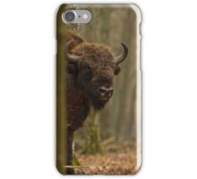 European Bison peering iPhone Case/Skin