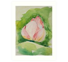 New Born Lotus Art Print