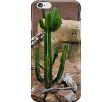 Desert Cactus iPhone Case/Skin