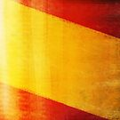 Spain flag  by naphotos