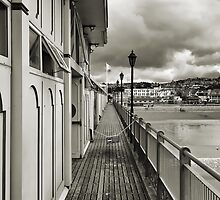 Paignton Pier - ipad by DARREL NEAVES