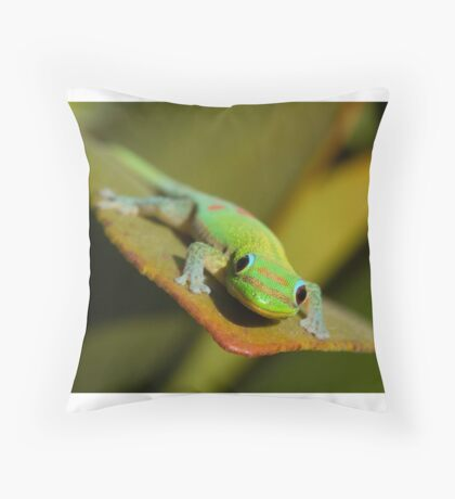 Cute Amphibian Throw Pillow