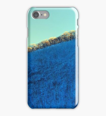 HDR Blue Sky Trees Snow iPhone Case/Skin