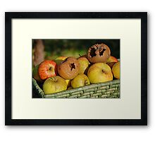 Bad apples in the basket Framed Print