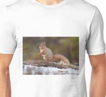 Red squirrel in snow Unisex T-Shirt