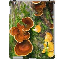 Fungus Fairy iPad Case/Skin