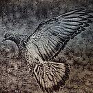 For The Pigeon Lover by Deborah  Benoit