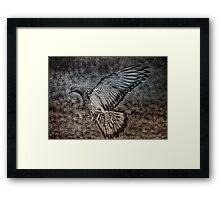 For The Pigeon Lover Framed Print
