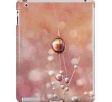 Sunset & Snowflake Cactus Drops iPad Case/Skin
