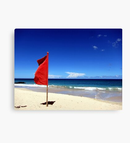 The Red Flag Canvas Print