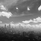 City in the  pollutions fog  by naphotos