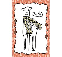 Oh hi cute doodle llama knitting crochet scarf Christmas Photographic Print