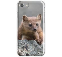 Long-tailed Weasel iPhone Case/Skin