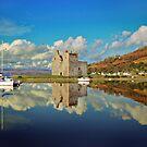 Lochranza Castle, Isle of Arran by catrionam