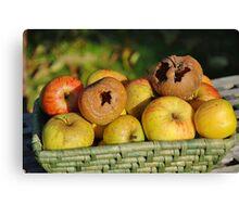 Basket of bad apples Canvas Print