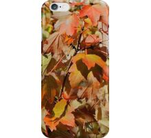 It's A Colorful Autumn! iPhone Case/Skin