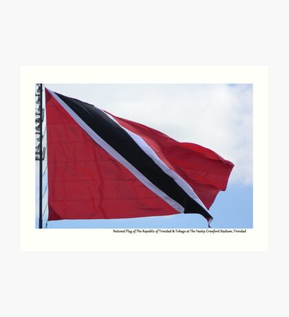 National Flag Flying Art Print