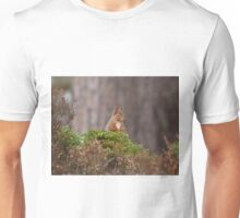Cheeky Red squirrel Unisex T-Shirt