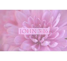 John 3:16 In Pink Photographic Print