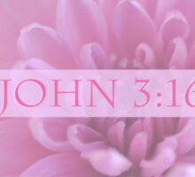 John 3:16 In Pink Sticker