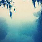 blue fog  by Jamie McCall