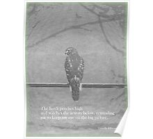 The Hawk Perches High Poster