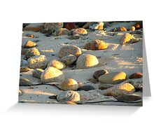 Sunlight on Lobsterville Beach Greeting Card