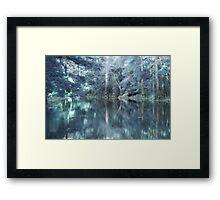 Mystic Bayou Framed Print