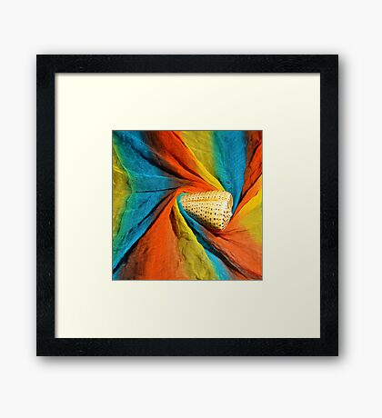 sea snail and the color Framed Print
