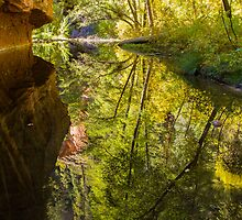 Deep Reflections by BGSPhoto