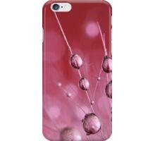 Claret Cactus Drops iPhone Case/Skin