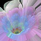 Beautiful Lotus by maf01