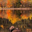 Lubnaig Autumn (2) by Karl Williams