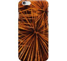 Burrs iPhone Case/Skin