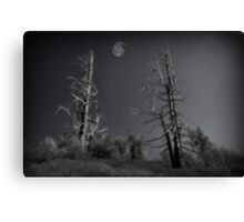 """ Night on Wizards Mountain "" Canvas Print"