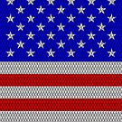 Metal Effect Stars and Stripes iPad Case by Steve Crompton