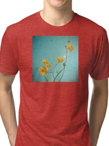 Happiness Is Tri-blend T-Shirt