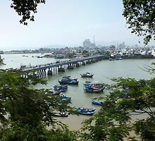 View of Cai River from Po Nagar Cham Tower by Lucinda Walter
