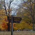 Signs of Fall by Mellinda