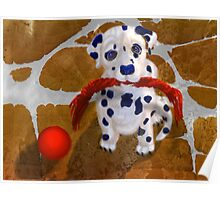 Let's Play, Dalmation Puppy, by Alma Lee Poster