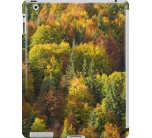 Fall Colors iPad Case/Skin