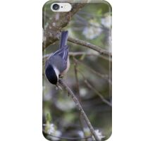 Early-Bird Nuthatch  iPhone Case/Skin