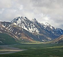 Denali mountains by enutini
