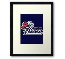 Columbia Patriots Framed Print