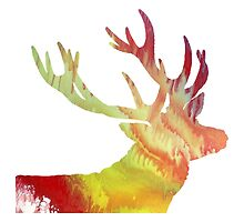 Abstract colorful Antler painting by MordaxFurritus