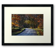 The Road To Autumn Framed Print